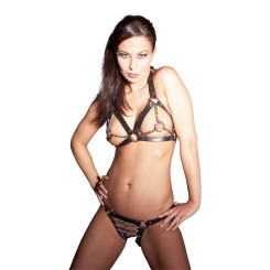 Harness bikini bh og trusser