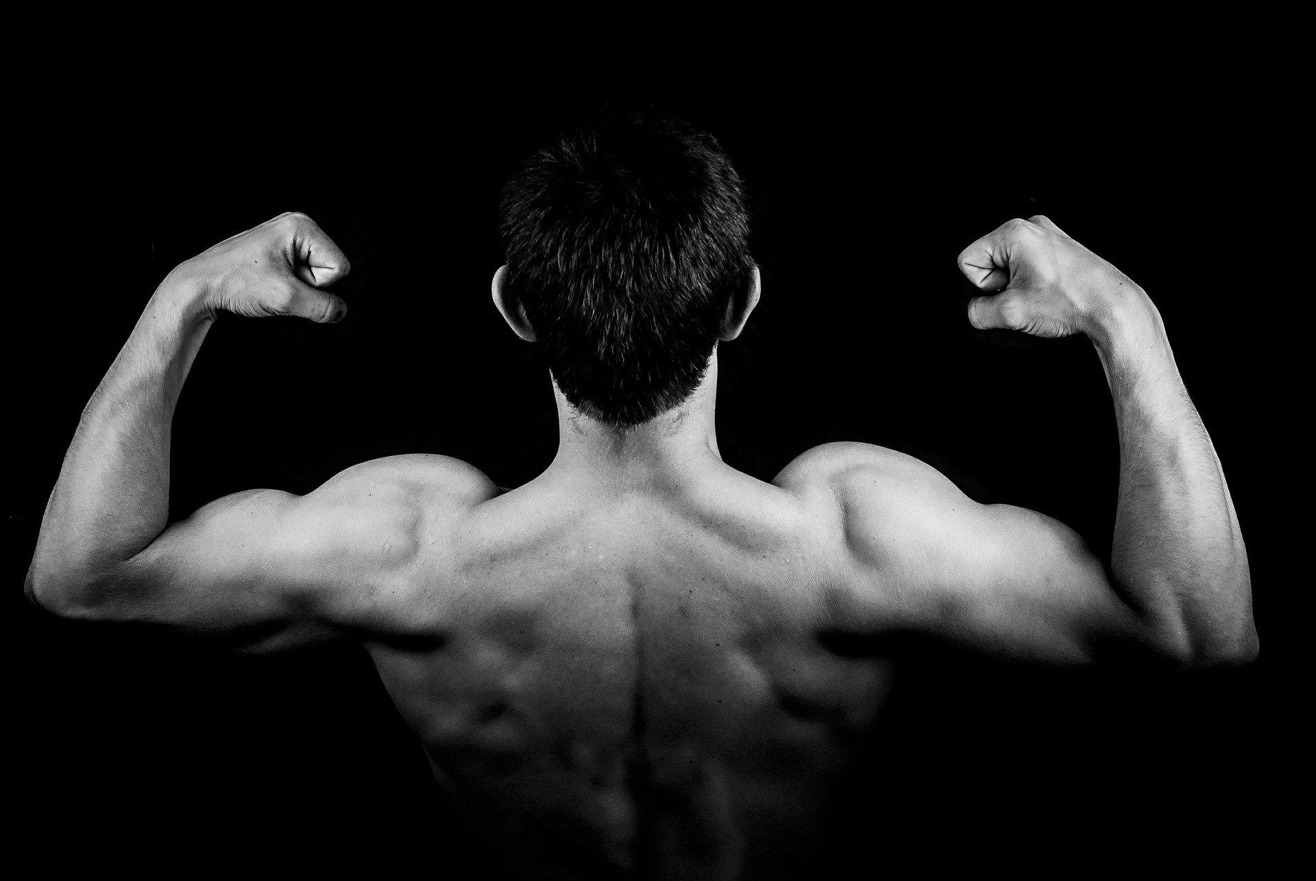 testosteron tilskud