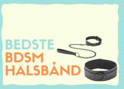 BDSM halsbånd – De 7 bedste i test